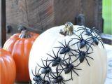 Decorative White Pumpkins for Sale No Carve Halloween Pumpkins Ideas for Decorating Pumpkins Quickly