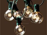 Deneve Lights String Lights 25ft Clear Globe Bulb G40 String Light Set with 25 G40
