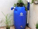 Diy Decorative Rain Barrels Kit Mini Cisterna 240 L Caractera Sticas Do Produto Capacidade