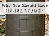 Diy Decorative Rain Barrels Rainwater Harvesting Rainwater Harvesting Barrels and Rain