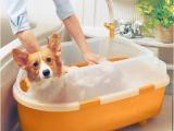 Dog Bathtubs for Sale Iris Dog Bath Tub Medium On Sale