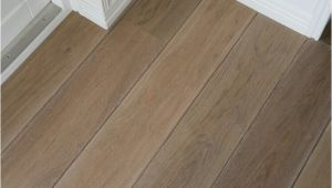 Dog Pee On Wood Floor Pin by Parket Specialist Gouda On Parket Vloeren Pinterest