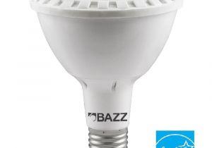 Edison Light Bulbs Home Depot Circline Led Bulbs Light Bulbs the Home Depot