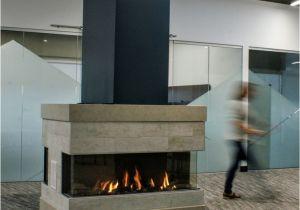European Home Element 4 Fireplace 23 Best Gaskamine Von Ruegg Images On Pinterest Gas Fireplace