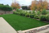 Fake Grass for Backyard Artificial Grass for Landscapingputting Green Artificial Grass