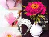 Foam Pads for Gumpaste Flowers Amazon Com Peony and Austen Rose Sugar Flower tool Set Gumpaste