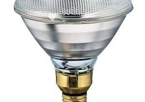 Food Heat Lamp Rental Philips 175 Watt 120 Volt Par 38 Incandescent Heat Lamp Light Bulb