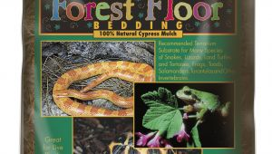 Forest Floor Cypress Mulch forest Floor Bedding A Zoo Med Europe