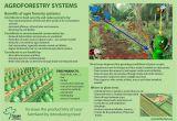 Forest Floor Mulch Christchurch One Stop organic Shop East Africa Training Materials