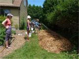 Forest Floor Mulch Nz Sheet Mulching the Druid S Garden