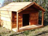 Free Large Breed Dog House Plans Duplex Dog House Plans Duplex Dog House Plans 15 Brilliant Diy Dog