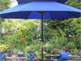 Garden Art Umbrellas Firenze Art Janet Davis Explores Colour