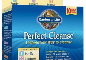 Garden Of Life Perfect Cleanse Amazon Com Garden Of Life 10 Day Gentle Detox Pills Perfect