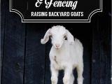 Goat Hay Rack 65 Best Future Goat Stuff Images On Pinterest Diy Hay Feeder