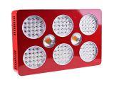 Grow Light Setup Mastergrow Double Switch Cree Cxa 2530 Cob and Double Chips 1800w