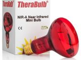 Infrared Heat Lamp Salon therabulb Nir A Near Infrared Bulb 150 Watt 240 Volt Eur