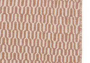 Kitchen Rugs at Walmart orange Rugs at Walmart Luxury Re Mendations Outdoor Carpet Walmart