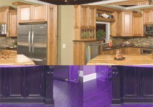 Kitchen Storage Cabinet Exquisite Kitchen Pantry Furniture within assembled Kitchen Cabinets