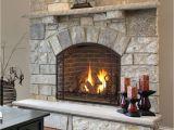 Kozy Heat Wood Fireplace Reviews Home
