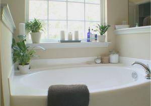 Large Bathtubs Ideas Decorating Around A Bathtub