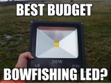 Led Bowfishing Lights Budget Bowfishing Led Light Le Warm White Led Youtube