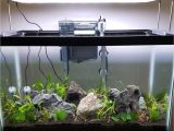 Led Light for Planted Aquarium Timer Dimmer Device for Twinstar 450ea the Planted Tank forum