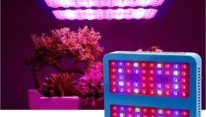 Led Lights for Growing Cannabis Double Chips Led Ir Uv Plant Grow Lights 1000w Full Spectrum Green