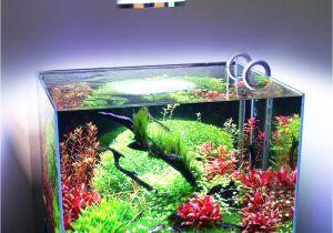 Led Lights for Reef Tank 54w 36w Freshwater Saltwater Aquarium Lighting Marine Reef Aquariums