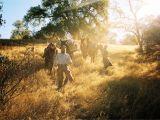 Lentz Landscape Lighting A California Outfitter Leads Horseback Treks Into the Wild Cowboys