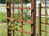 Macy's Round oriental Rugs Grape Vine Trellis Design Inspirational Garden Fence Grapevine
