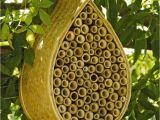 Mason Bee House Plans Bamboo Mason Bee House Mason Bees Gardener S Supply Bamboo Pinterest