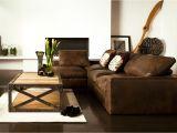 Men S Apartment Decor Interior Design Ideas for Mens Living Room Conceptstructuresllc Com