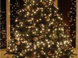 Menards Christmas Lights Diy Xmas Decorations Best Of Wall Decal Luxury 1 Kirkland Wall Decor