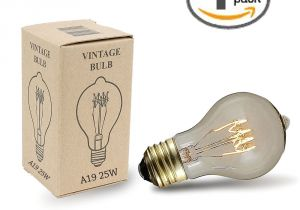 Mini Light Bulb socket Buy 25w A19 Vintage Edison Style Filament Bulbs Novelty Lights Inc