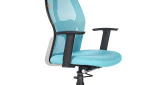 Office Chairs Under 5000 Bluebell Ergonomic Kruz High Back Office Chair Buy Bluebell