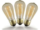 Old Fashioned Light Bulbs Buy 40w St64 Vintage Edison Style Filament Bulbs Novelty Lights Inc