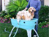 Outdoor Bathtub for Dogs Best 25 Dog Bath Tub Ideas On Pinterest