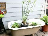 Outdoor Bathtubs Diy How to Make A Bathtub Fish Pond