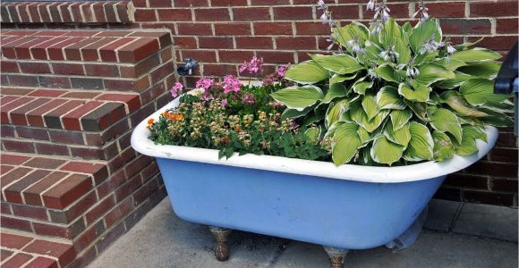 Outdoor Clawfoot Tub Dr Dan S Garden Tips Using the Unusual