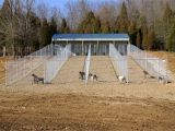 Outdoor Dog Kennel Flooring Ideas 25 Beautiful Heated Dog House Plans askmrbike Com