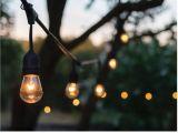 Outdoor Strand Lighting 24 Ft 12 Bulb Outdoor String Lights