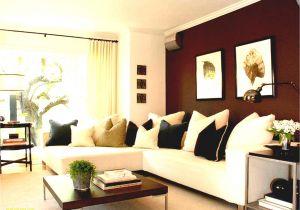 Paint Colors for Bedrooms Paint Living Room Ideas Colors Dazzling 2018 Paint Color Trends