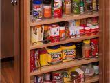 Peka Spice Rack Drawer Insert Diy Pull Out Spice Rack Plans Http Www Bedbugle Com 1449 Diy