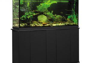 Petco Aquarium Light Aquatic Fundamentals 55 Gallon Upright Aquarium Stand Petco