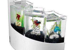 Petco Aquarium Light Aqueon Betta Falls Aquarium Kit In White Petco