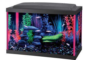 Petco Aquarium Light Aqueon Led 5 5 Gallon Pink Aquarium Kit Petco