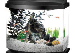 Petco Aquarium Light Aqueon Minibow Led Desktop Fish Aquarium Kit In Black Petco