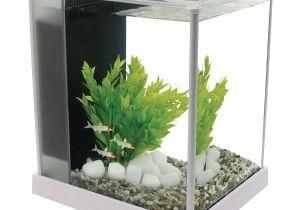 Petco Aquarium Light Fluval Spec Iii Aquarium Kit In White Petco