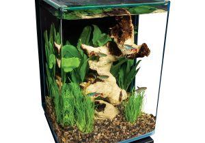 Petco Aquarium Light Marineland Portrait Glass Led Aquarium Kit Petco