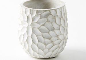 Porcelain Flower Pots Chrysanthemum Pot Chrysanthemums Pottery and Pottery Ideas